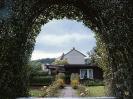 Bilder von Kleingarten